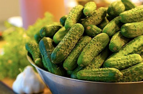 This goes out to the darling (and very pregnant) Lauren , and anyone else who's swimming in garden cucumbers at the moment. No garden? No wo...