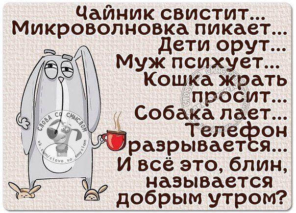 Slova So Smyslom Yumor Statusy Citaty Zima Vyskazyvaniya Velikih Lyudej Citaty Funny Quotes Sarcasm Funny Quotes Humor
