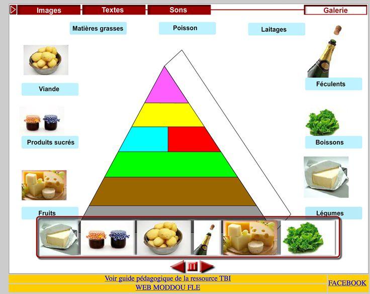 Ressource TBI/TNI : la pyramide alimentaire