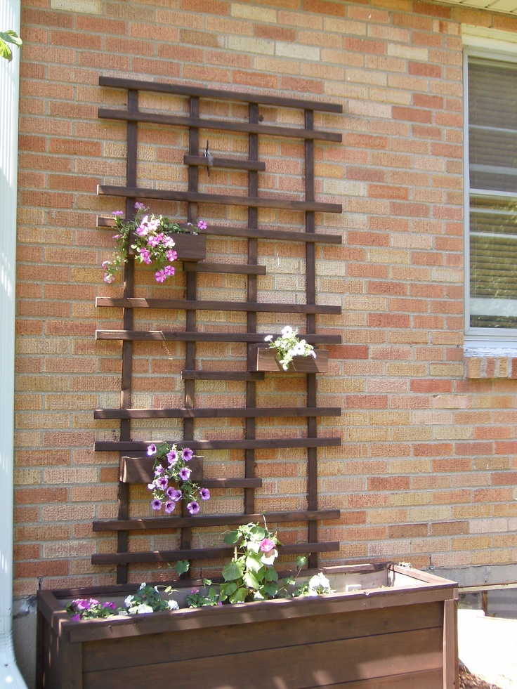 Wooden rose trellis designs woodworking projects plans for Wall trellis ideas
