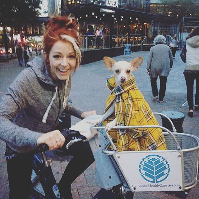 When your dog's steez is better dan yours. Lindsey Stirling