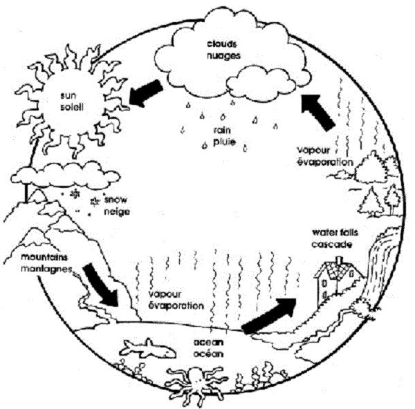 Water Cycle Coloring Pages Kids