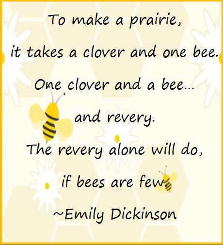 Quotes In The Secret Life Of Bees: 109 Best Mysterious Emily Dickinson Images On Pinterest
