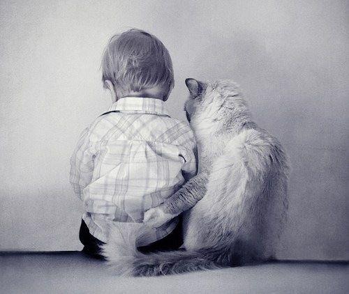 Куда девается наша доброта?