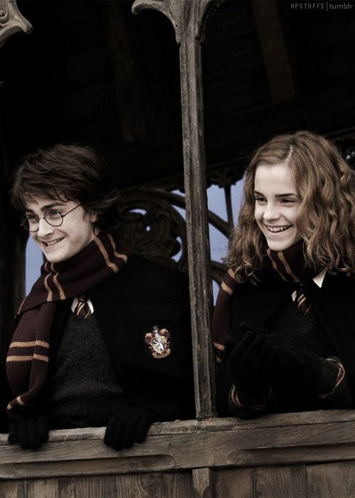 Harry & Hermione - Harry Potter Stuff