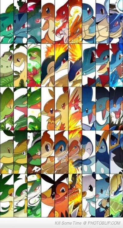 Such Starters. Very Pokemon