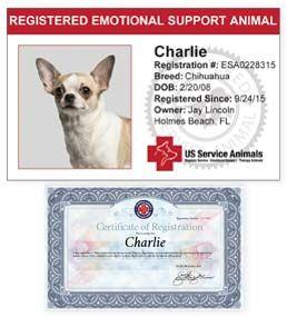 Emotional Support Animal Registration - US Service Animals