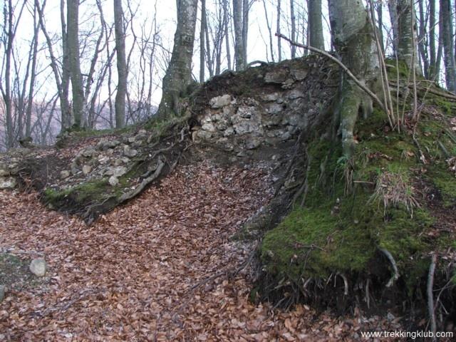 Vityal #fortress - #Transylvania