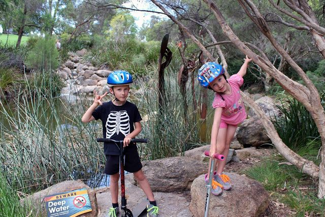 Creating and Educating: Kings Park