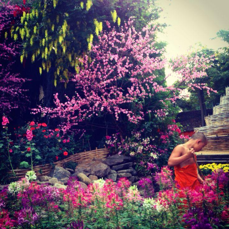 Thailand.. Chiang Mai