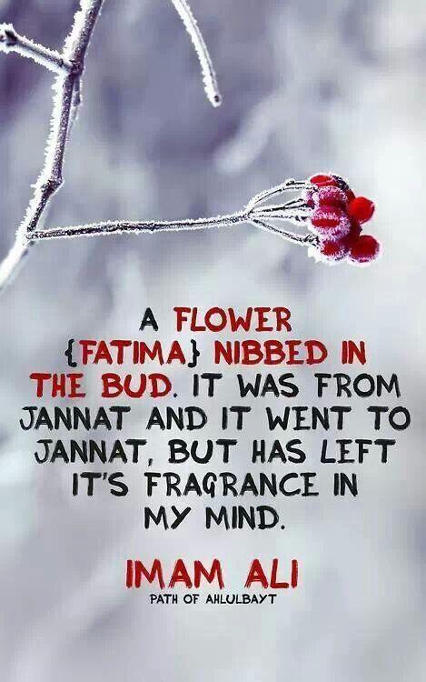 Hazrat Ali Quotes On Wife. QuotesGram