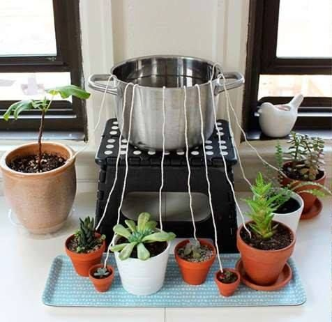 Going away? Keep your plants wet: a bowl with plenty of water, placing one end of the string inside the container and the other end in the pot you want to water. By capillary action, the water will naturally move from the container to the pot.