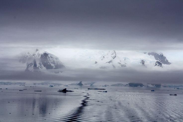 "Antarctic ozone layer shows ""first fingerprints of healing"" // @inhabitat"