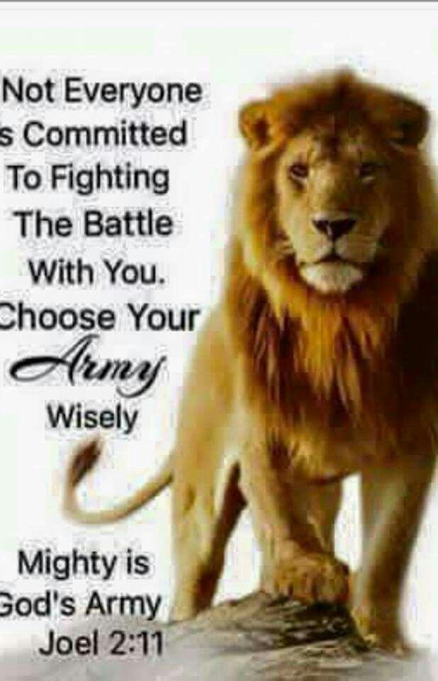 251 Best The Lion Of Judah Amen Images On Pinterest Lion Of