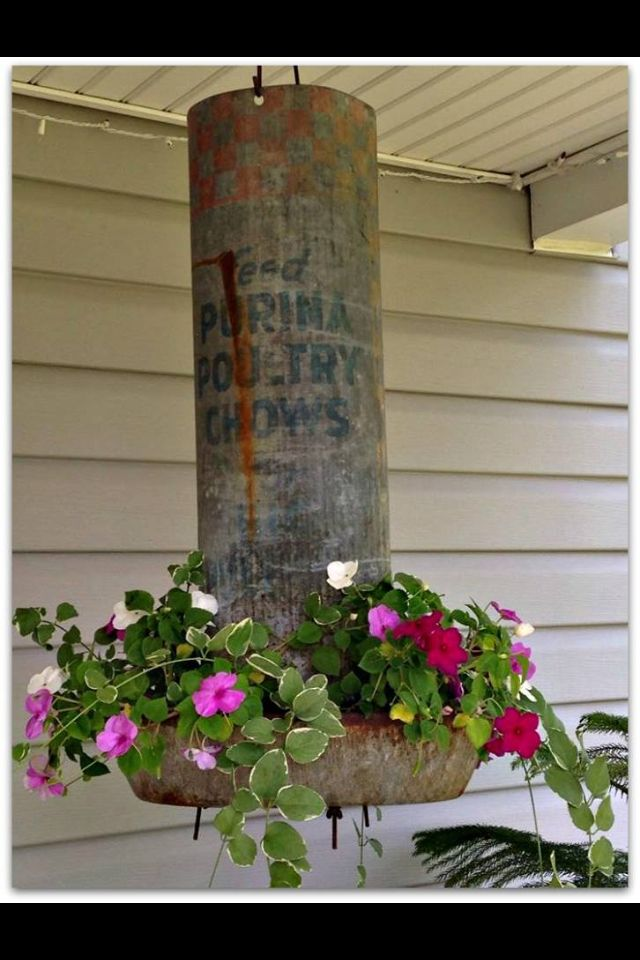 Old chicken feeder used as a planter