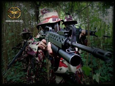 wisbenbae: Operasi2 pasukan elit dunia yang gemilang...