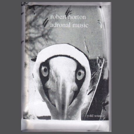 Starting fresh today with this special tape from Robert Horton. Tonal, spacey and weird. Story&review by #Scoromide. #TheAtticReviews #roberthorton #adronalmusic #goldsoundzrecords #tapeoftheday