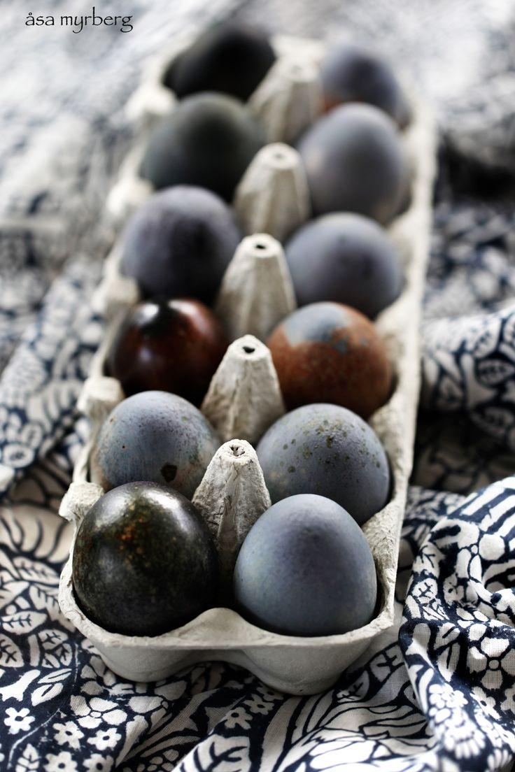 blåbärsfärgade ägg_myrberg