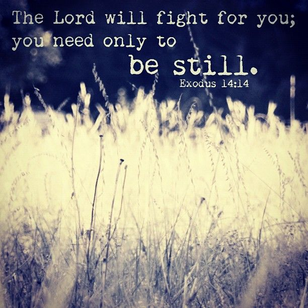 exodus 14 14 such a meaningful verse for me god spoke
