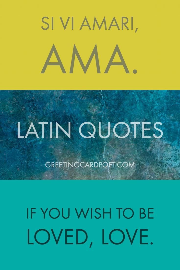 Best Latin Quotes, Sayings and Phrases Latin quotes