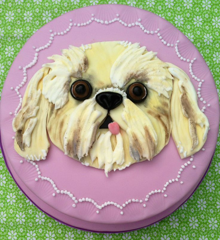 Shih Tzu Cake. Handmade  designed by Lady Luck's House of Cakes x