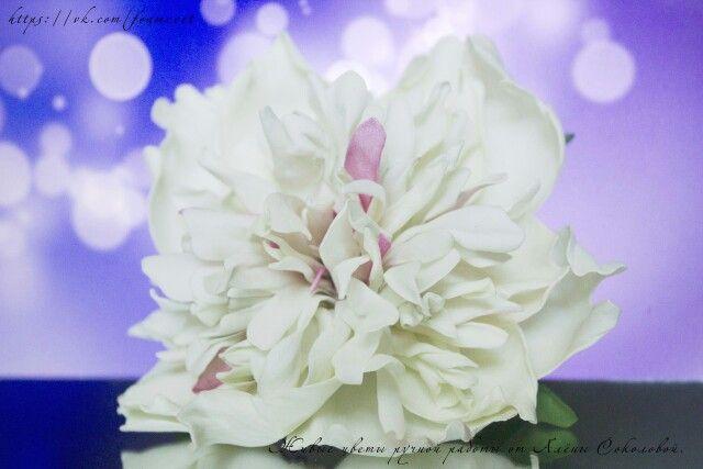 """Заколка-автомат """" Пион Фестива максима"""" #фоамиран #пион #заколка #заколкадляволос #заколкасцветами #ручнаяработа #happy #handmade #flowers #barrette #hairpin #whiteflower"""