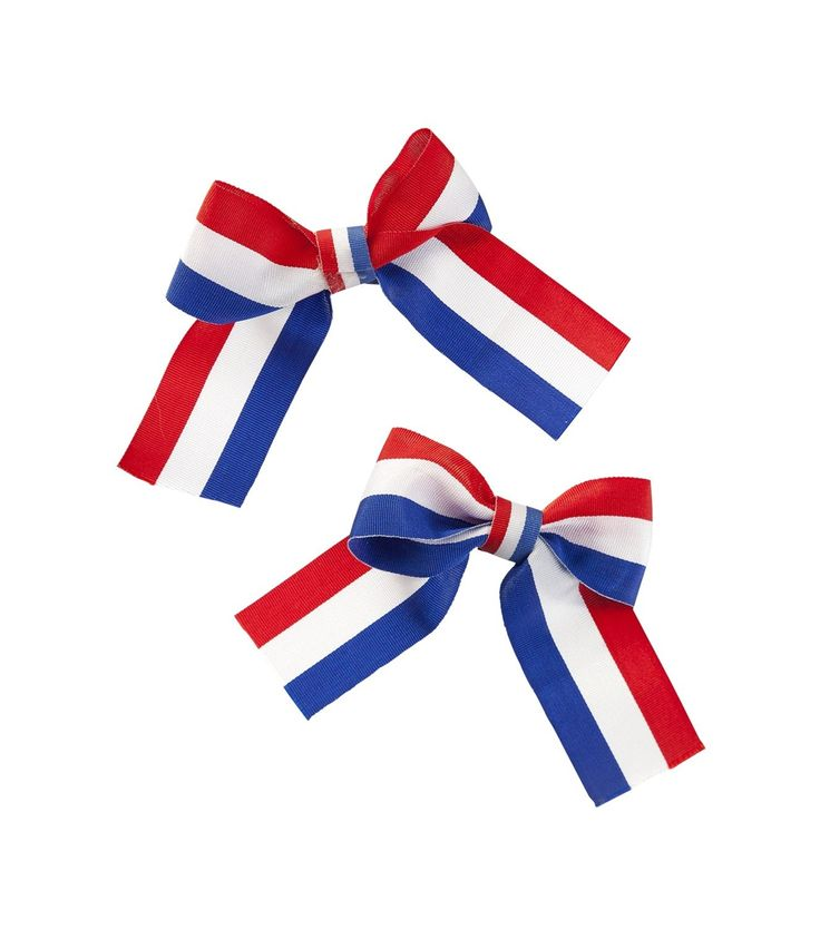 flag day in holland