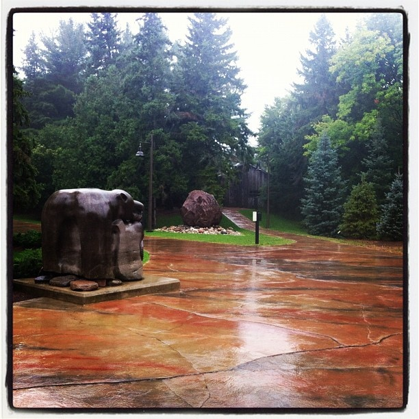 Rainy day at the McMichael