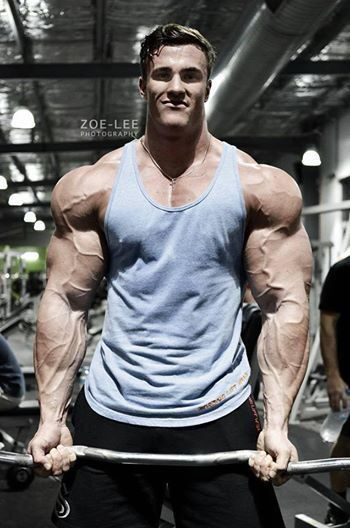 51 best gym time images on Pinterest Bodybuilding, Workouts and - new arnold blueprint app