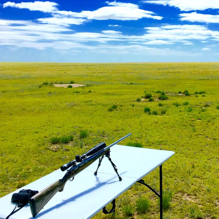 Ruger M77 25-06 prairie dog hunt. Superb for buckin wind.