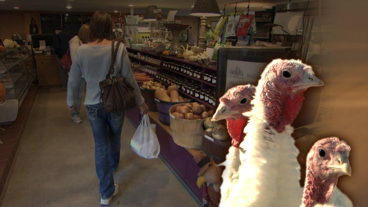How do small farms, competing against factory farms, gobble up their share of business? The family-run Ekonk Hill Turkey Farm in Connecticut relies on Thanksgiving sales for nearly half of their yearly income, selling high-quality birds raised in a free-range environment. Economics correspondent Paul Solman looks at how small businesses struggle in an economy dominated by big business. Continue reading →