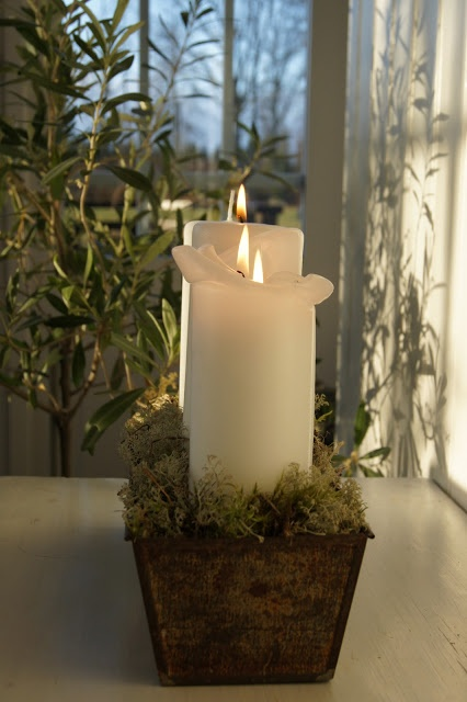 Simple for Advent.  Wood trough/box ,moss and large candles...beautiful