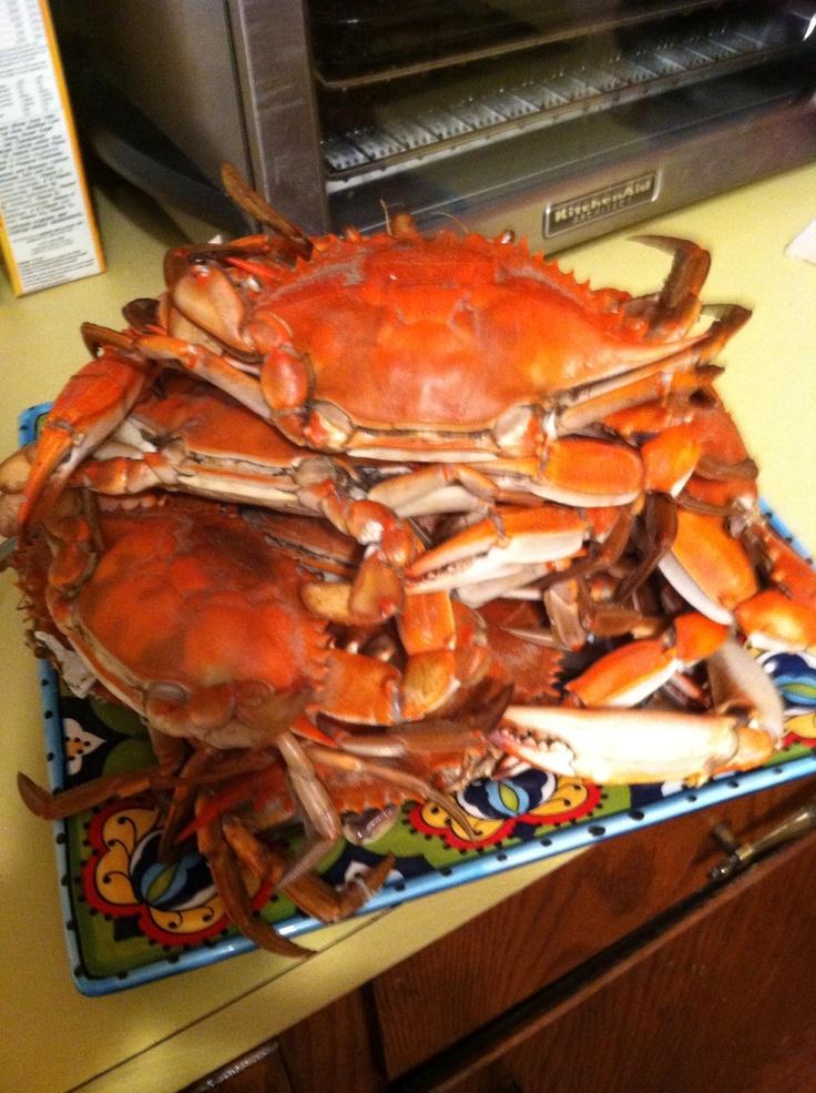 Steamed crabs ! | Crustaceans....Hot & Steamed | Pinterest ...