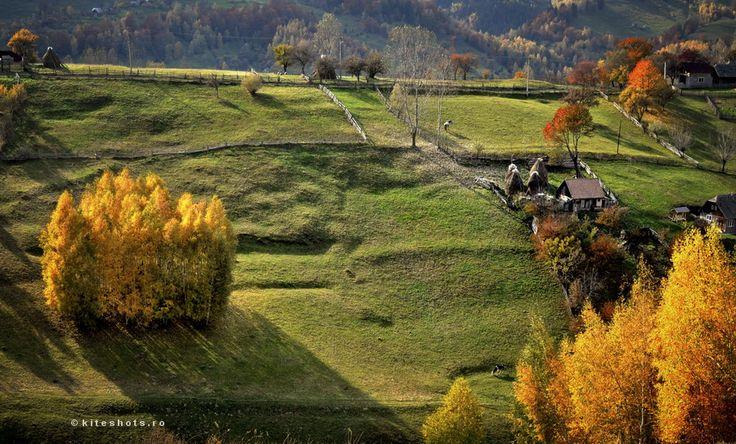 Autumn in Romania - Tara Barsei