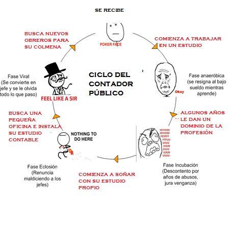 Ciclo de Vida del Contador Público | Humor sin Impuestos