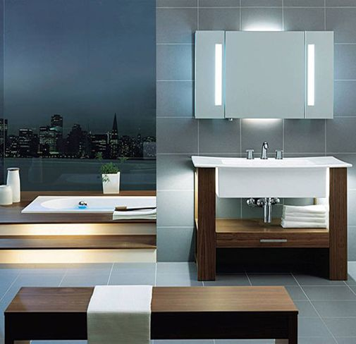 27 best images about ba os on pinterest dream bathrooms for Imagenes de banos modernos