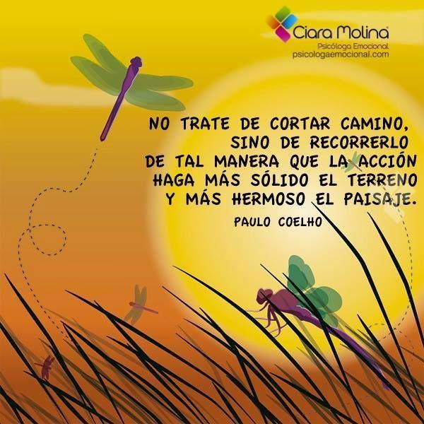 EN LA ACCIÓN ESTÁ LA SOLUCIÓN... (((Sesiones y Cursos Online www.ciaramolina.com #psicologia #emociones #salud)))