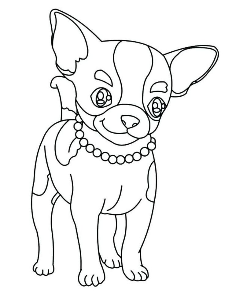 46++ Cute chihuahua coloring pages information