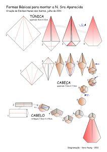 Diagrama da N. Sra Aparecida criada por Emilson N. dos Santos - pg01