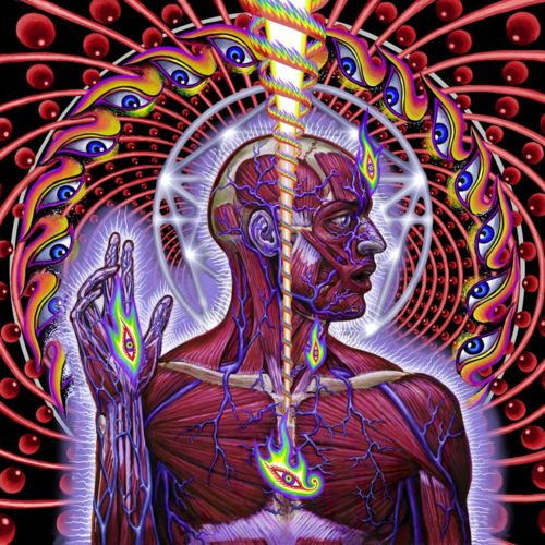 Alex Grey for Tool's Lateralus Love Alex Grey, and all his work, aaand Lateralus quite possibly may be my favorite album....so far...we'll see when I hear this new one. Hopefully on their first tour in Nevada!!!!