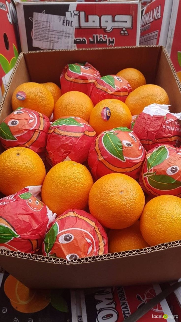 Local Agro Classifieds Valencia oranges from Egypt - FRUITS - MOSCOW - FREE INTERNATIONAL CLASSIFIEDS