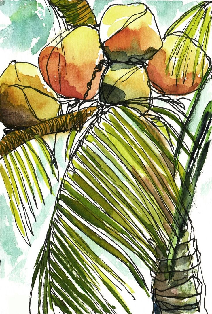 Art Painting Watercolor Tropical Coconuts Palm Tree PRINT