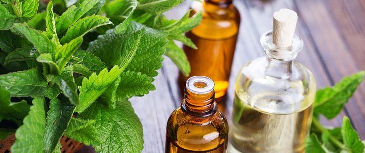 Cand vine vorba de produse pentru ingrijirea pielii, focusul cade pe beneficii…