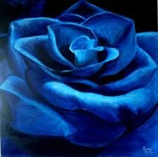 blue rose tattoo designs