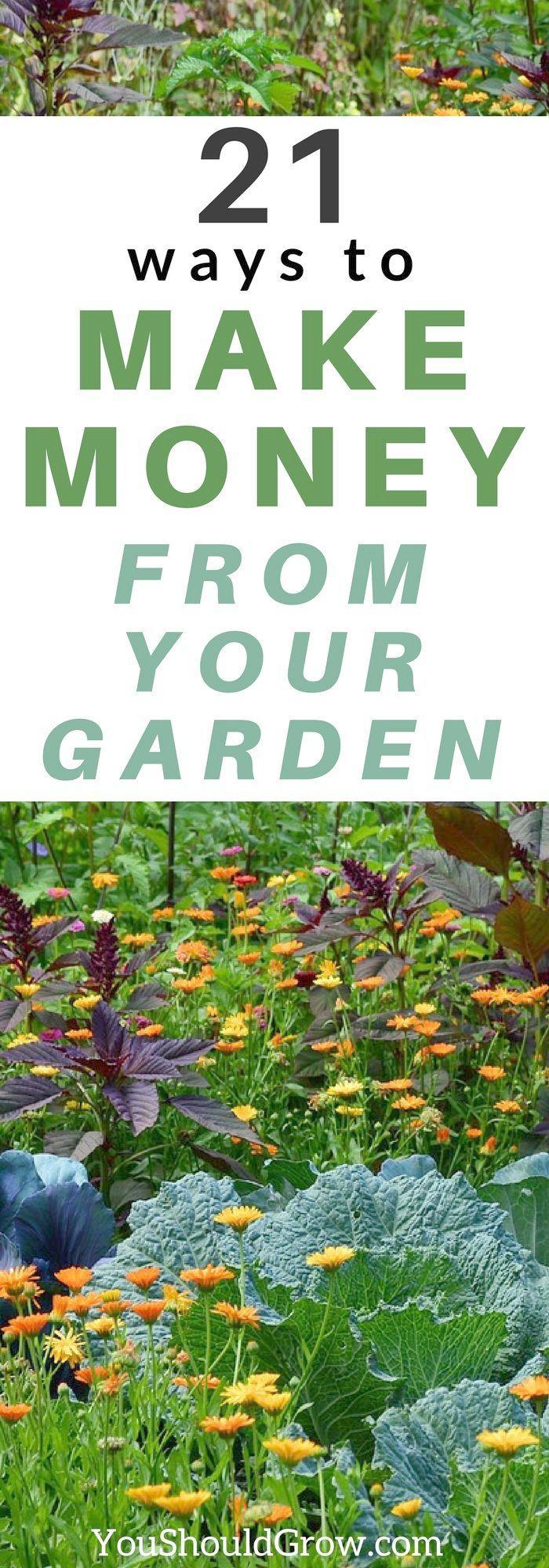 Gardening Tools Dubai an Gardening Tips For Strawberries per Gardening Tips For …