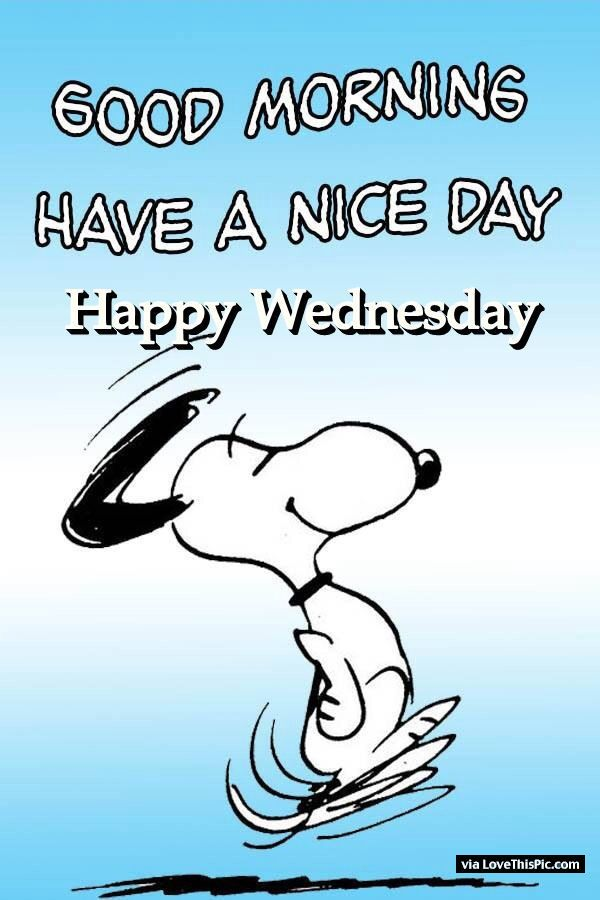 Good Morning Snoopy Wednesday : Good morning have a nice day happy wednesday g