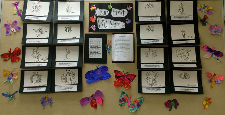 examples of reggio emilia documentation - Google Search