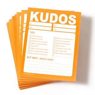 Kudos Pad - set of 10 pads-Trainers Warehouse