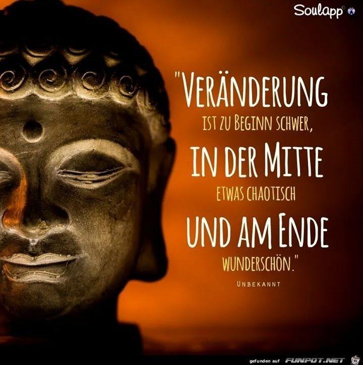 weise sprüche buddha
