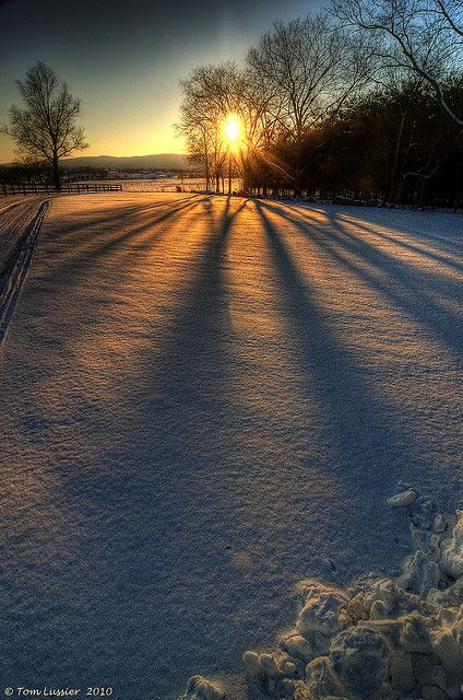 SO beautiful! I love how the rays of sun beams through the trees making rays on the snow!